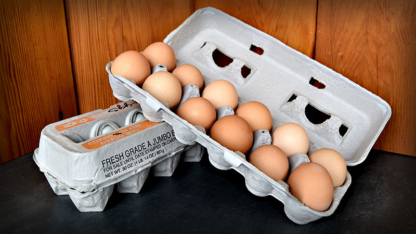 Brick Farm Market Eggs