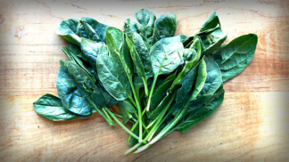 Brick Farm Market, Fresh Spinach